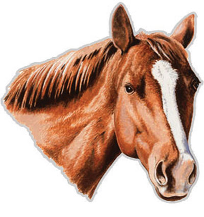 Horsehead Magnetic Decal