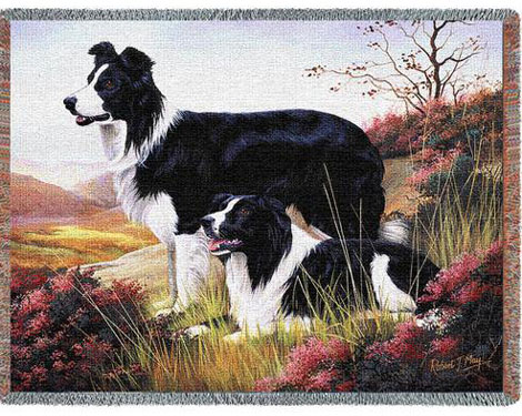 Border Collies Throw/Tapestry
