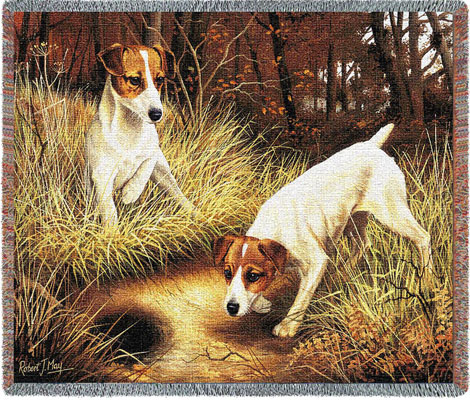 Pair of Jack Russells Throw