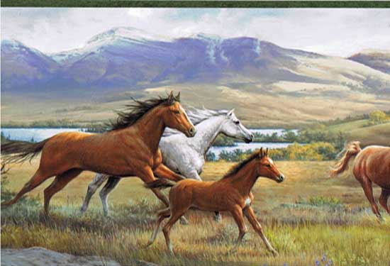 Wallpaper Border - Open Range