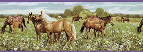Wallpaper Border-Grazing Horses