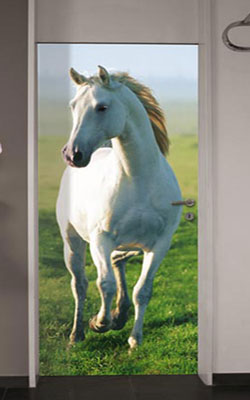 Wallpaper Mural - White Horse