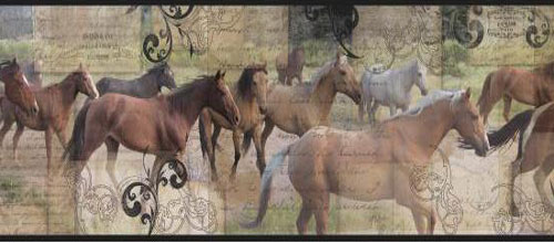 Wallpaper Border - Roaming Horses