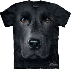 Black Lab T- Shirt