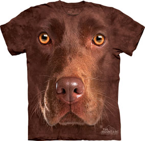 Chocolate Lab T- Shirt