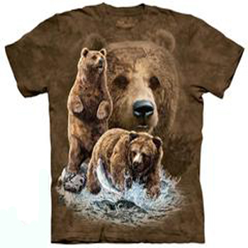 Find 10 Bears T- Shirt