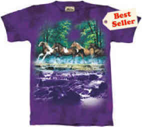 Spring Creek Run T-shirt